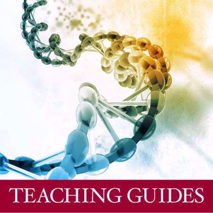 Picture of Exercise in Pharmaceutical Pricing: Market Sizing (Teaching Guide)